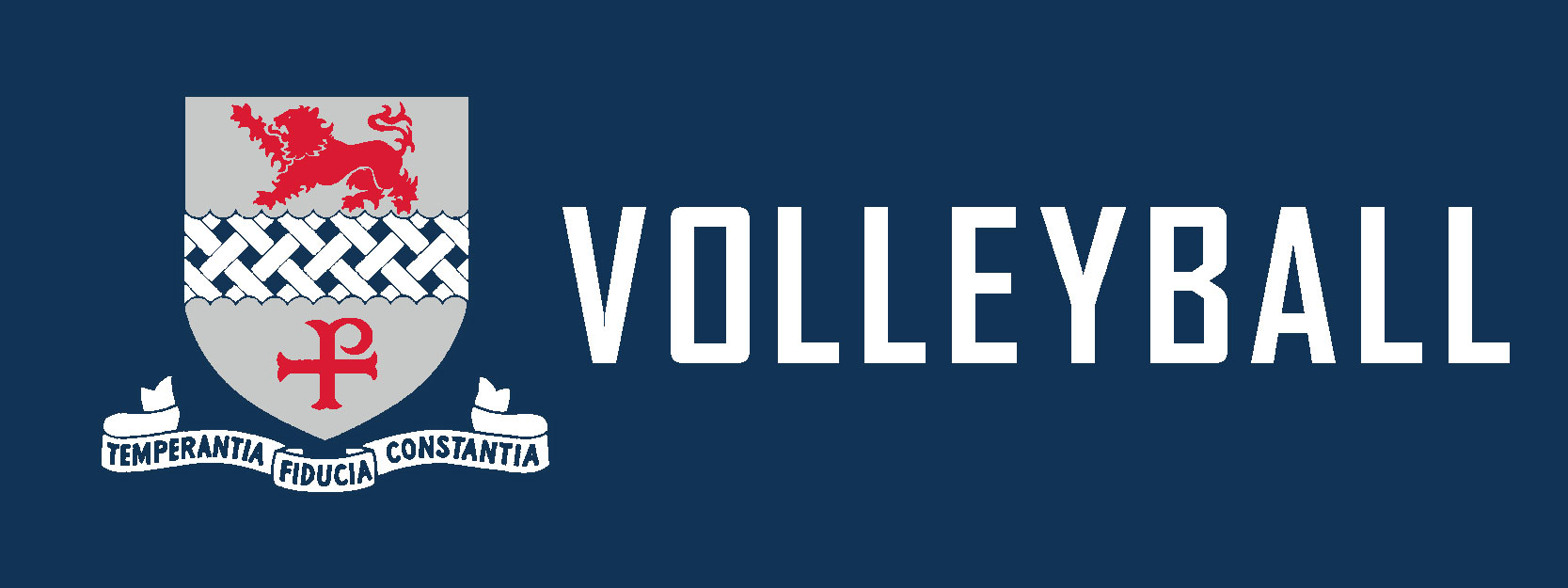 Volleyball livestream logo